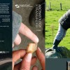 Archaeology Strangford a Guide