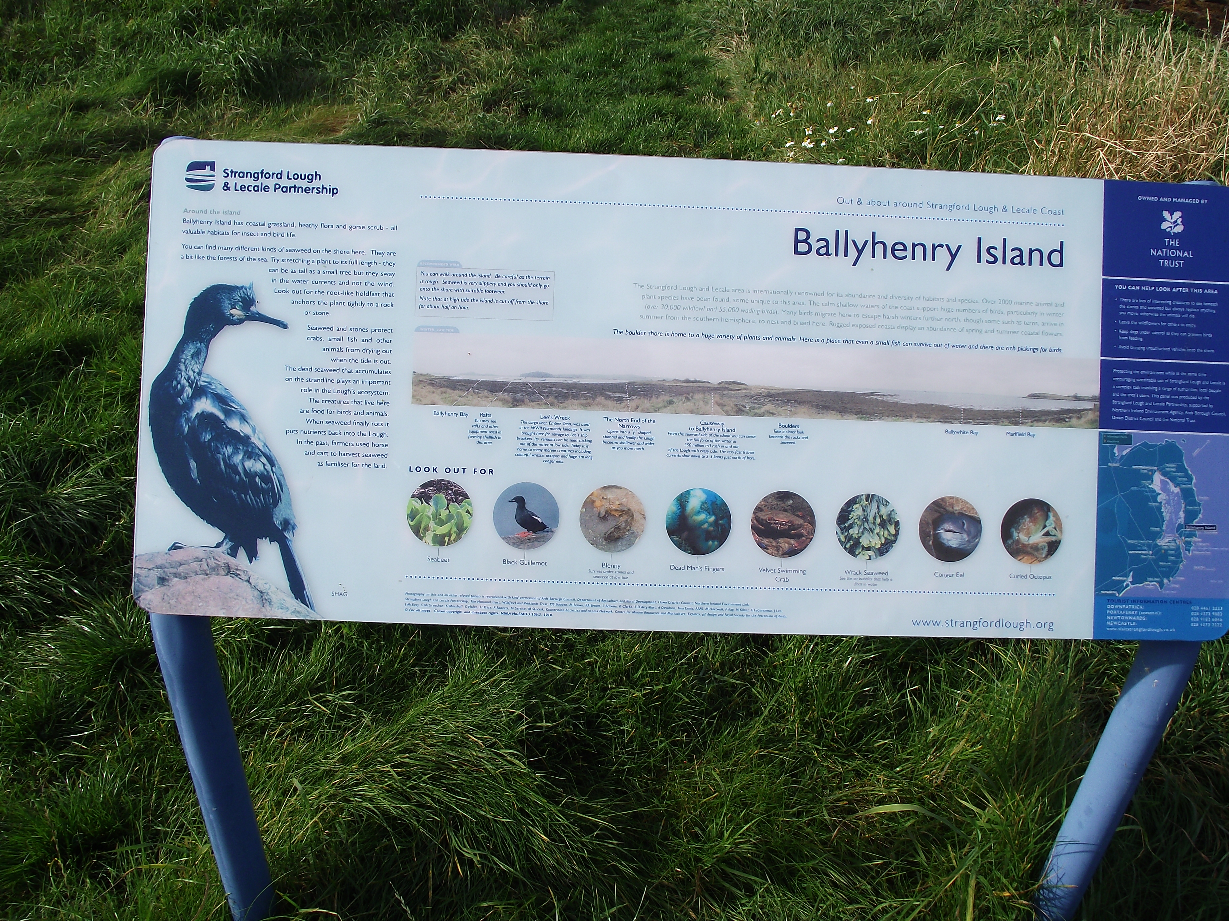Ballyhenry Island - walking and diving