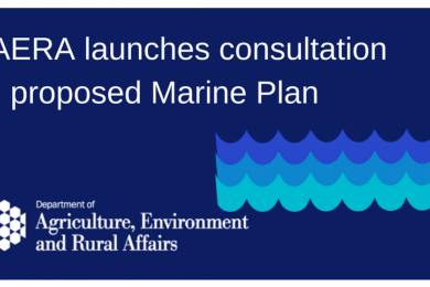 DAERA consults on proposed Marine Plan for Northern Ireland