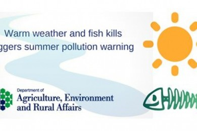 Warm weather and fish kills triggers summer pollution warning