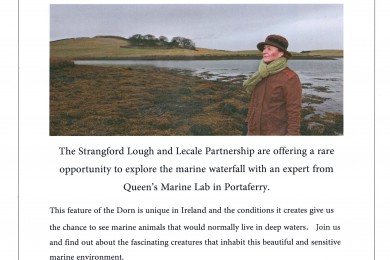 Free Guided Walk to the Marine Waterfall in the Dorn, Portaferry - 13th February 2016