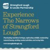 Experience The Narrows of Strangford Lough Leaflet