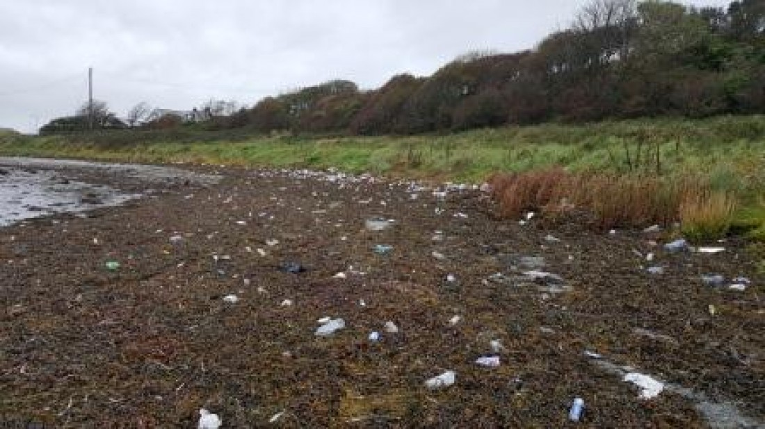 Ardglass Beach Clean