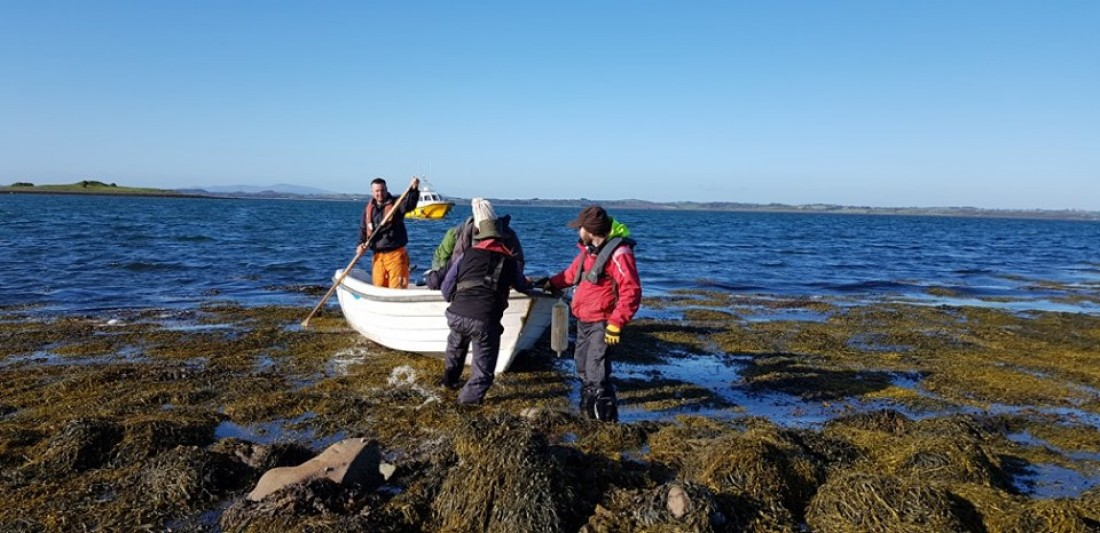 Strangford Lough Island Clean-up with the National Trust Rangers and Volunteers