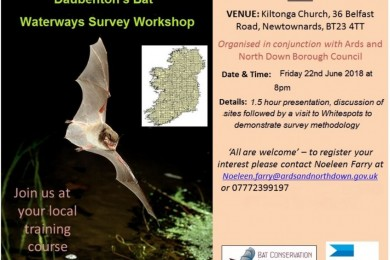 Daubenton's Bat Waterways Survey Workshop 22nd June 2018