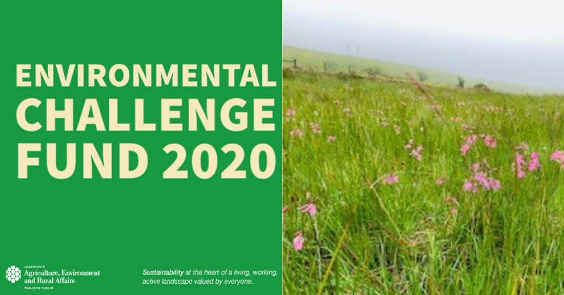 A new Environment Challenge Fund Competition