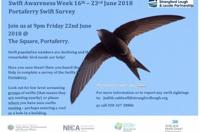 Swift Awareness Week 16th - 23rd June 2018