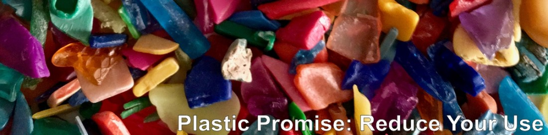 Plastic Promise - Reduce Your Use with Live Here Love Here