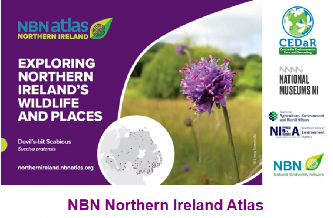 National Biodiversity Network Atlas for Northern Ireland